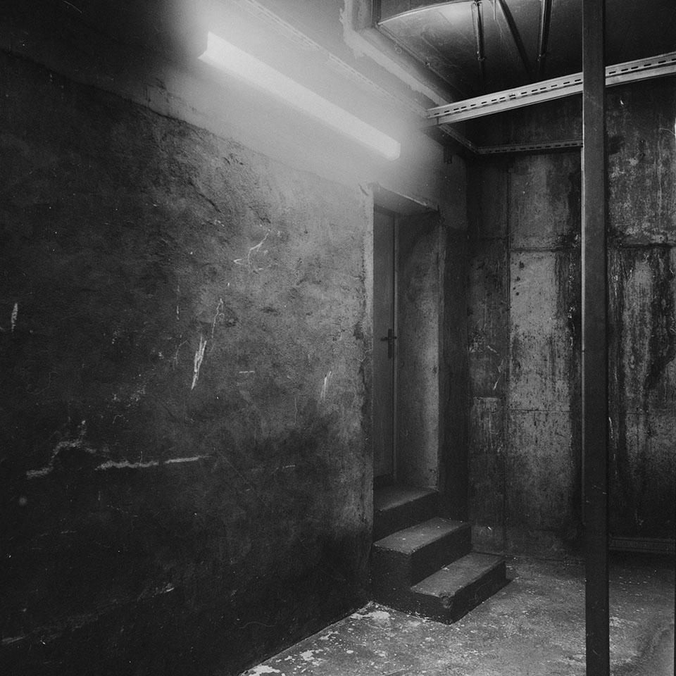 Los asientos en sombra siempre están vacíos / 2014